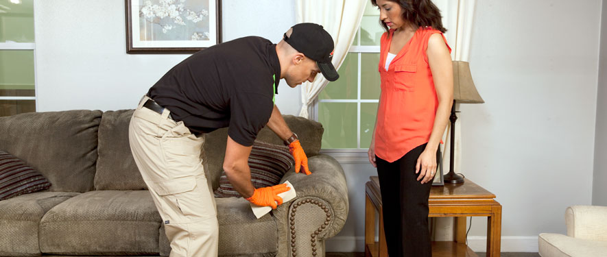 Rockwall, TX carpet upholstery cleaning